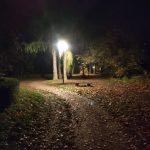 Obnova veřejného osvětlení v sadech T. G. Masaryka (sady Míru) v Josefově